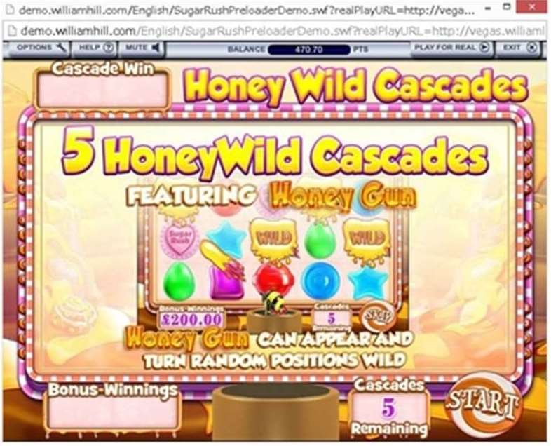 Honey Wild Cascades ボーナス2