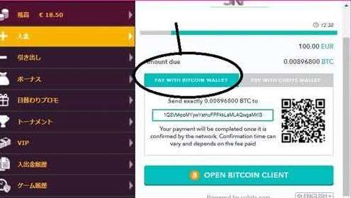 Pay With Bitcoin Wallet
