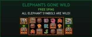 Elephants Gone Wild Free Spin