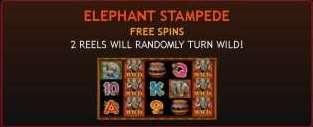 Elephant Stampede Free Spins
