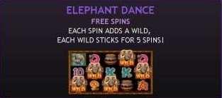 Elephant Dance Free Spins
