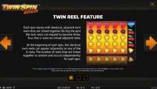 Twin Reel機能1