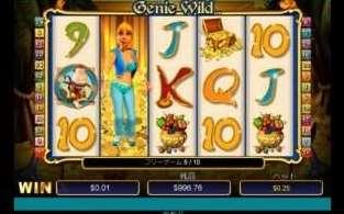 Genie Wild Scratch10