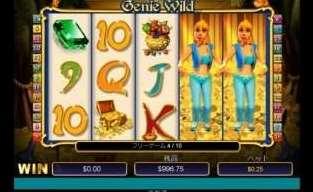 Genie Wild Scratch8
