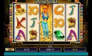 Genie Wild Scratch9