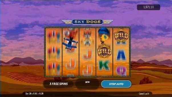 Dog fight free spin bonus8