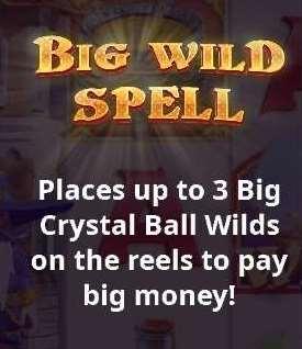 BIG WILD SPELL