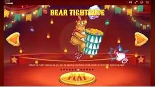 BEAR TIGHTROPE