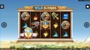 Wild Deal2