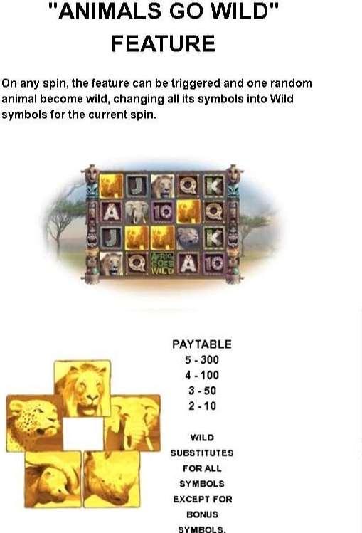 Animals Go Wild Feature1