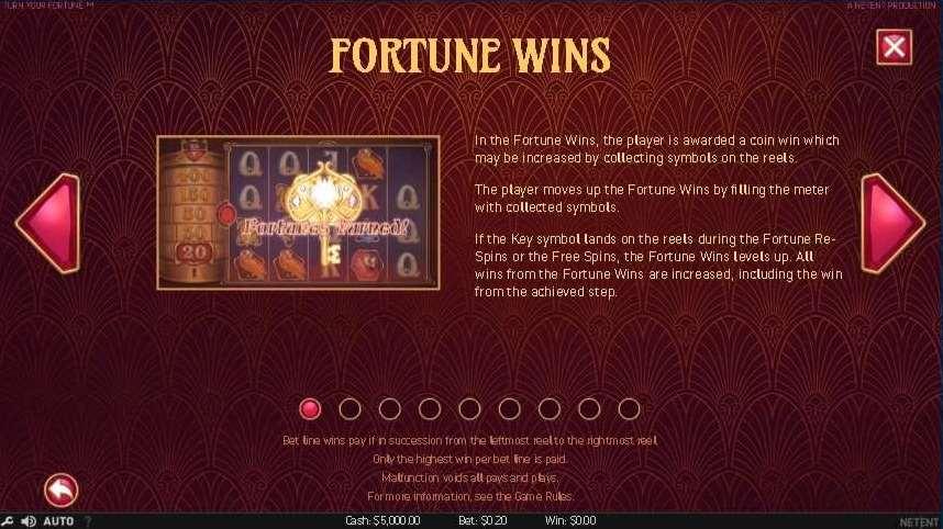 Fortune Wins1