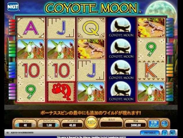 Vera John Coyote Moon
