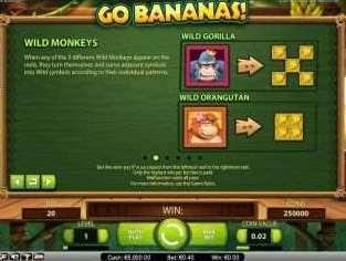Wild Monkeys機能2