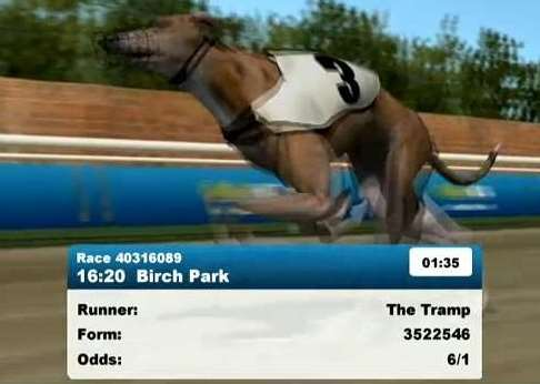 Greyhounds Hurdles2