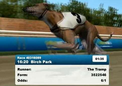 Greyhounds Hurdles2