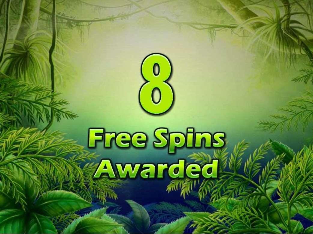 Free Spins Bonus3