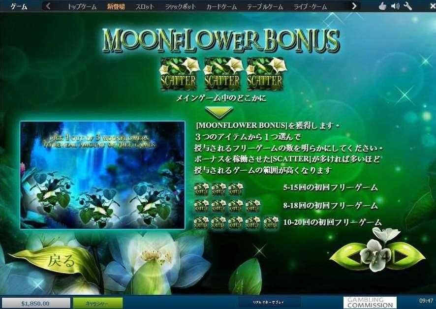 Moonflower フリーゲーム