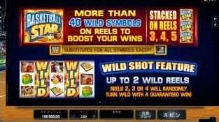 Wild Shot 機能1
