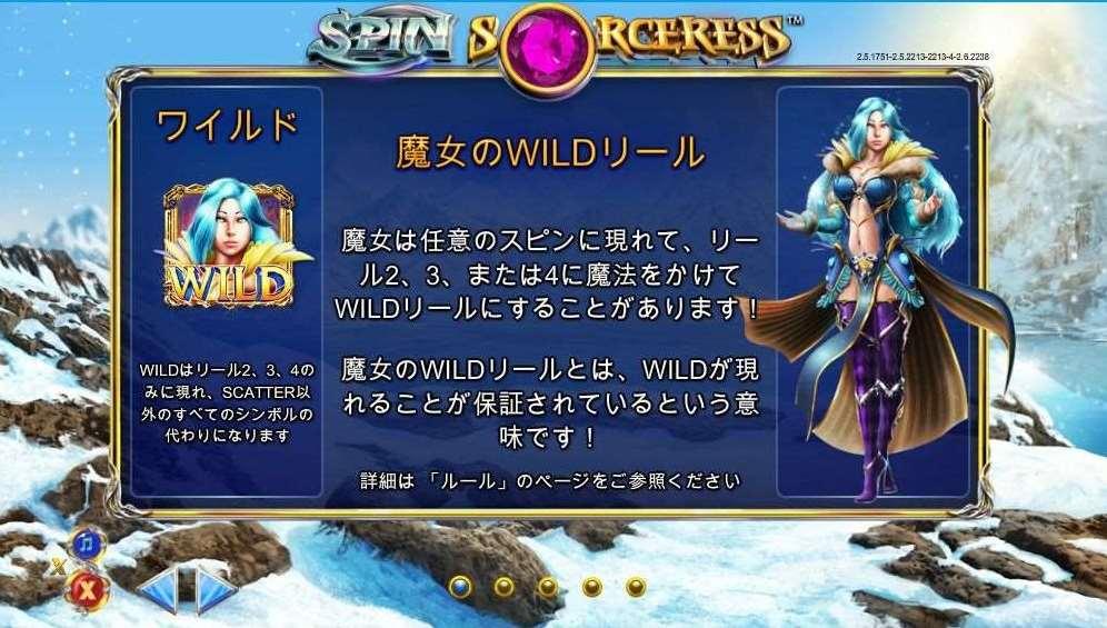 魔女のWildリール