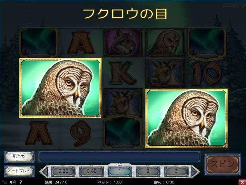 フクロウの目2