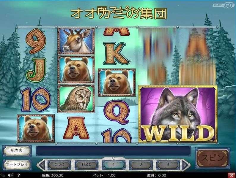 オオカミの集団4