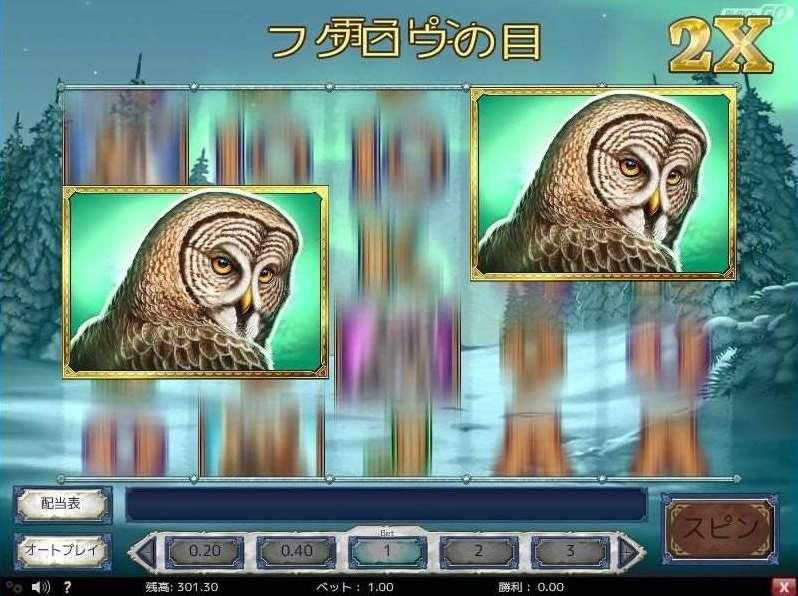 フクロウの目4