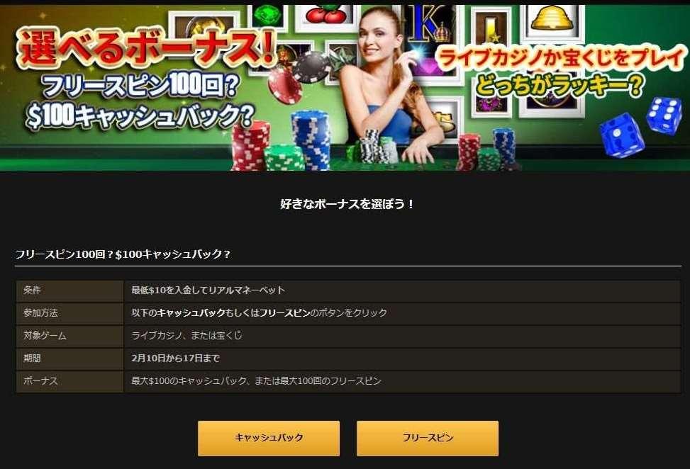 NetBet選べるボーナスプロモーション1