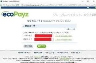 NetBetEcoPayzの認証画面