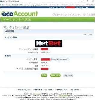NetBetEcoPayzの確認画面