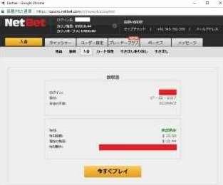 NetBet入金Ecopayz