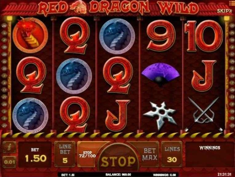 ドラゴンワイルド6