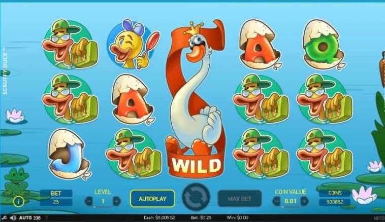Expanding Wild4