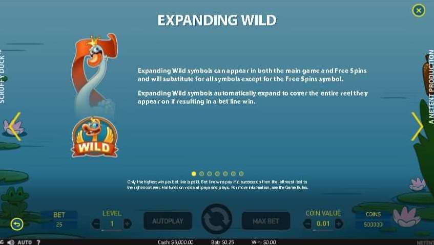 Expanding Wild1