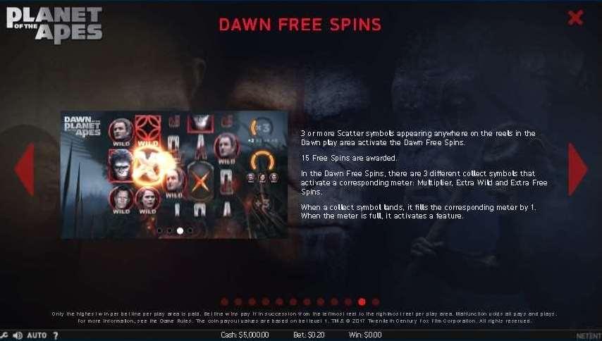 Dawnフリースピン1
